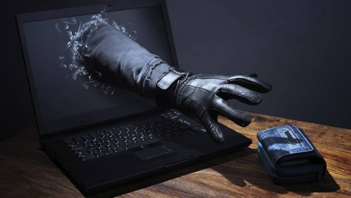Internet Crimes: Types and Preventive Measures